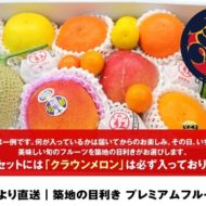 ふるさと納税おすすめ果物!目利きが選ぶプレミアムフルーツセット