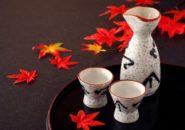 """ふるさと納税おすすめ お礼品! 泉州地酒""""荘の郷""""大吟醸&純米大吟醸1.8Lギフトセット"""