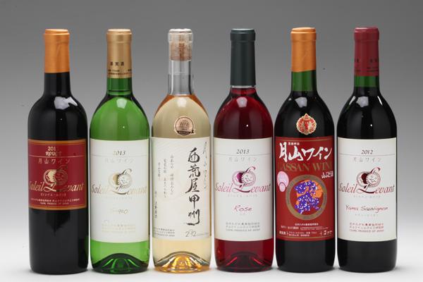 大人気ふるさと納税おすすめ!月山ワイン6本セット