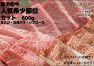 ふるさと納税おすすめ!泉佐野市 黒毛和牛 希少部位セット 600g